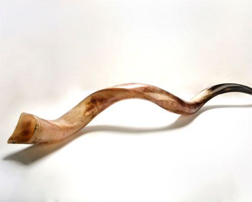 kudu shofar